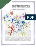 MUTACION ENTROPICA DE LAS REDES NEURONALES GENERADA POR EL BUEN EJERCICIO DOCENTE.docx