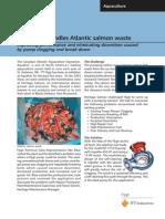 3417346 Heritage Salmon.pdf