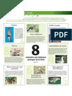 8 animales que debemos proteger en el Perú