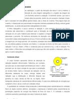 1.3 - FÍSICA DA FORMAÇÃO DE IMAGENS