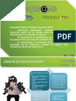FRANQUICIA_2013