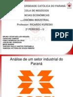 Analise de um setor Industrial - Copel.ppt