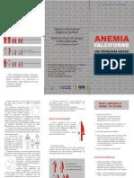 Folder Anemia Falc i for Me