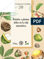 Plantas Vida Amazonas