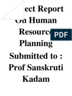 Project Report on Human Resource Planning