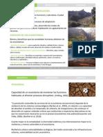 Resiliencia Urbana (Nerea Morán).pdf