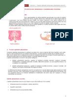 Lezione 3 - Tessuto Epiteliale Sensoriale e Ghiandolare Esocrino