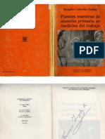 Fuentes Maestras de Atencion Primaria en Medicina Del Trabajo