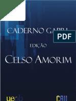 Palestra Celso Amorim