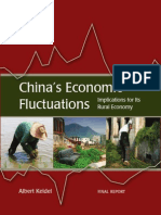 China's Economic Fluctuations