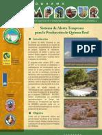 Boletín Compasur 3 SAT PrintD1