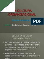 3313910 Cultura Organizacional
