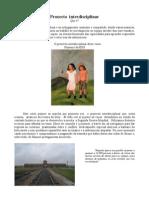 Revista Pi 2