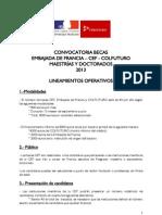 CEF_2013_ lineamientos_marzo