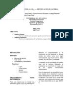PRUEBAS BIOQUÍMICAS PARA LA IDENTIFICACIÓN DE BACTERIAS (1)