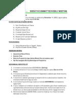 Telesom Minutes of Meeting Nov 1st 2012