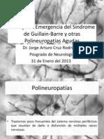 Manejo de emergencia del Síndrome de Guillain Barre