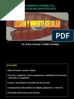 Lesión y muerte celularl