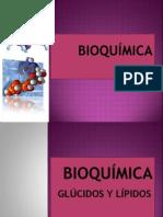 BIOQUÍMICA II.pptx
