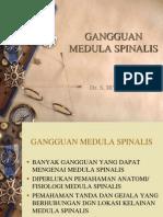 Gangguan Medula Spinalis