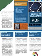 Plebiscito 02
