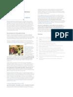 Academic Transcription Services Magazine II-Reseach Interview Transcription