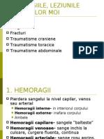 Sanitarii Priceputi(Prim Ajutor)
