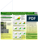 Heard Drybean Nutrient Uptake-poster(1)