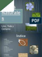 Fibras Naturales2.pptx