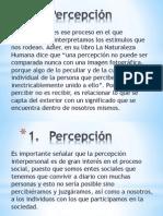 Apercepción+Tendenciosa+Por+qué+y+Para+qué+Teleología