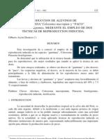 """PRODUCCION DE ALEVINOS DE """"GAMITANA""""Colossoma macropum y """"PACO"""" Piaractus brachypomus, MEDIANTE EL EMPLEO DE DOS TECNICAS DE REPRODUCCION INDUCIDA."""