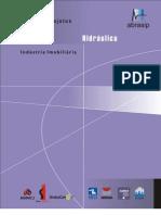 AsBEA. Manual de Escopo de Projetos e Serviços de Instalações Prediais - Hidráulica