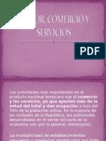 Sector, Comercio y Servicios