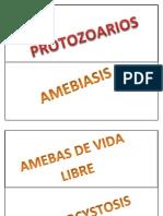 Atlas de Parasitologia (Autoguardado)
