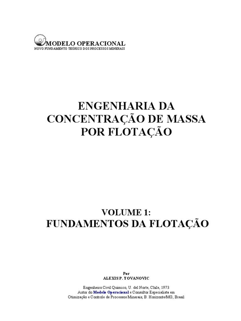 Engenharia da concentrao de massa por flotao livro ccuart Image collections