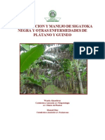 Manual de Identificacion y Manejo de La Sigatoka Negra