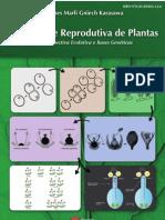 Diversidade Reprodutiva de Plantas - Uma Perspectiva Evolutiva e Bases Genéticas.pdf