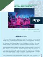 Cerebros Adolescentes. PDF