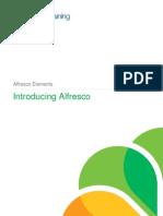 Elements Introducing Alfresco