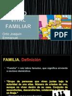 CICLO VITAL FAMILIAR.pptx