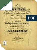 Kummer-Vz,fl,pn-opus127.pdf