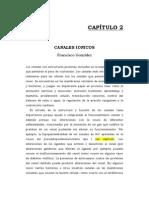 Canales Ionicos FGonzalez(1)