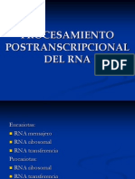 Procesamiento Postranscripcional Del Arn