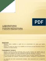 Laboratorio de Reduccion