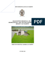 Diagnostico Regional Agroindustrial San Martin