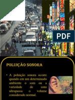 Poluição Sonora e Visual