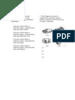 RIO Unit 05 Cellular Energetics Assessment