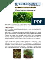 Acuarios-Acuario-Para-Guppys.pdf
