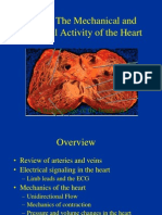 amali jantung 3