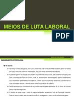 MEIOS DE LUTA LABORAL.pptx